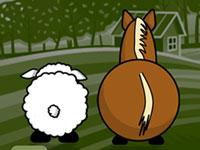 Trois moutons pour tricoter un pull ?