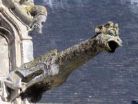 Stalles et dragon